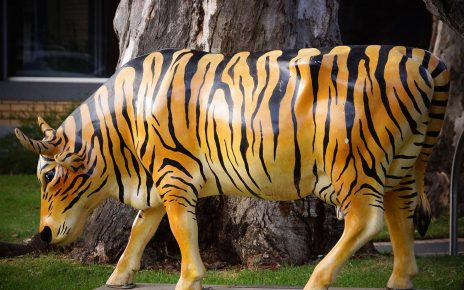 A cow statue with tiger stripes